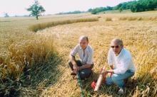 crop circle doug and david